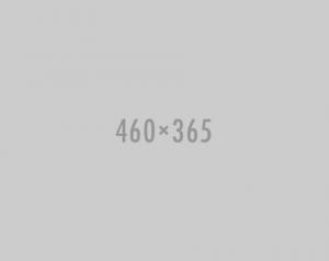 460x365